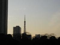 Tower10.jpg