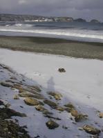 snow-w06.JPG
