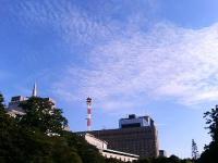 otome_walk07.jpg