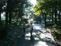 otome_walk08.jpg